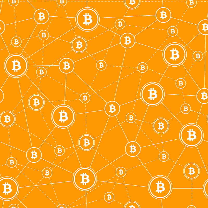Satoshi Nakaboto: 'Bitcoin halving search interest reaches all-time high'